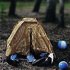 Rest in tent by Evgeniy Lankin