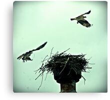 """The Nest"" Canvas Print"