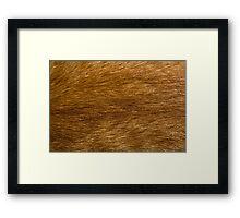 The Cat Fur Framed Print
