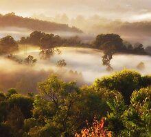 'Autumn Morn' by debsphotos