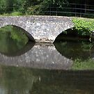 doneraile park bridge  by TIMKIELY