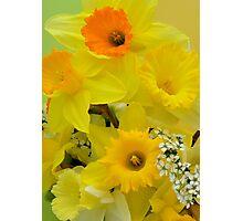 Spring Elegance Photographic Print
