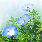Baby Blue Eyes a digitally painted floral watercolour by Joan A Hamilton
