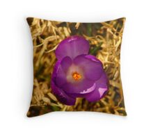 032011-90   THE SCOUT PART 2 Throw Pillow