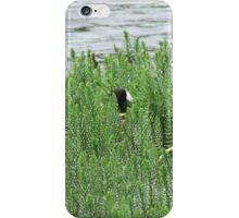 Hide-N-Seek iPhone Case/Skin