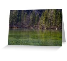 Spring Green Greeting Card