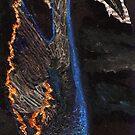 The Storm Bird by Matthew Rogers