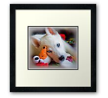 9 weeks and counting.... Framed Print
