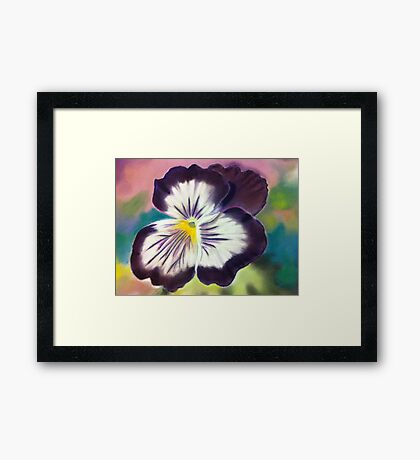 Purple pansy Framed Print