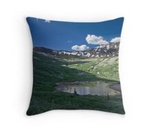 Mosquito Pass Throw Pillow