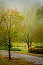Monet in the mist .. #1 by Rosalie Dale