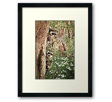 """Peek At Nature"" Framed Print"