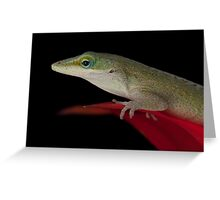 Anole on the lookout Greeting Card