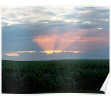 Sunset over Iowa Cornfields Poster