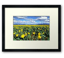Spring time Framed Print