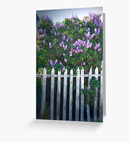 Lilac Fence Greeting Card