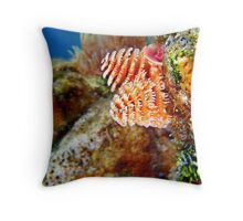Christmas Tree Worm Macro 2 Throw Pillow
