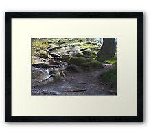Lake Forest HDR Framed Print
