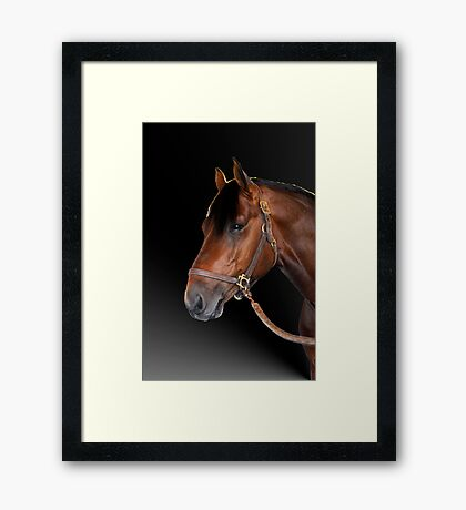 Holstein Hero Framed Print