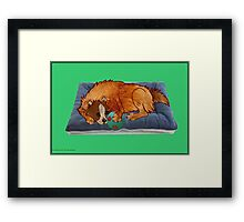 A relaxed dog [1923  views] Framed Print