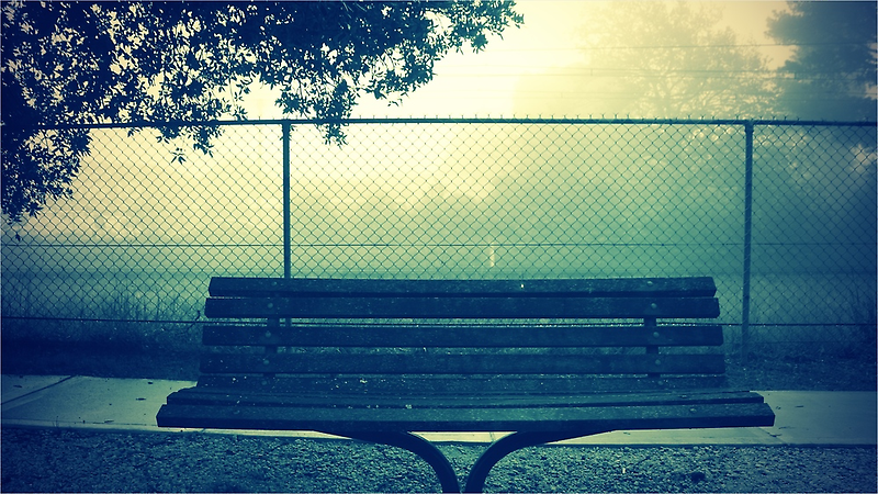 bench  by andreauzelac