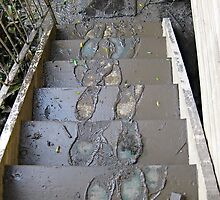 Brisbane Floods 2011 - Aftermath - Footprints by Neil Ross