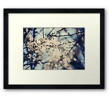 Back to Nature Framed Print