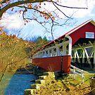 Barronvale Covered Bridge, Somerset County, PA by Georgia Wild
