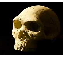 Alas, poor Yorick Photographic Print