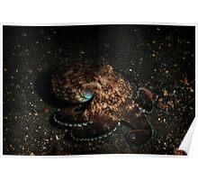 Coconut octopus Poster