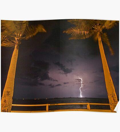 Palm tree lightning Poster