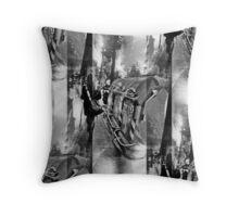 P1390581 _GIMP Throw Pillow