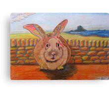 331 - LINDISFARNE BUNNY - DAVE EDWARDS - COLOURED PENCILS - 2011 Canvas Print