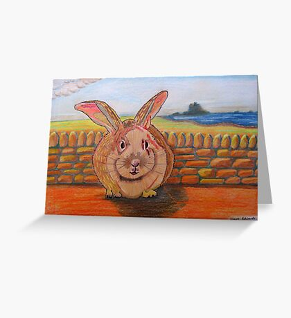 331 - LINDISFARNE BUNNY - DAVE EDWARDS - COLOURED PENCILS - 2011 Greeting Card