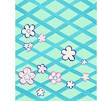Baby Blue Flower Garden Photographic Print