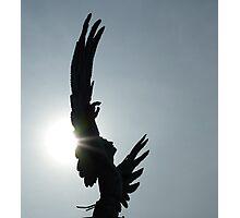 Too Close - Icarus Fountain, Ames IA Photographic Print