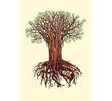 Tree Tee Photographic Print