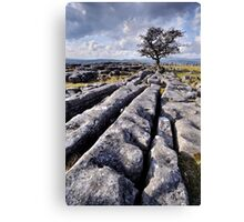 The Yorkshire Dales - Limestone Country Canvas Print