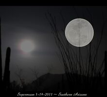 "Super ""Desert"" Moon in Southern Arizona by Kimberly Chadwick"