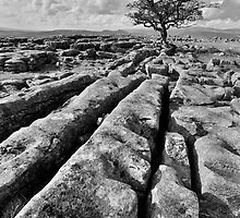 The Yorkshire Dales - Limestone Country by Dave Lawrance