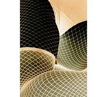 white net 73 Photographic Print