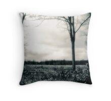 Window onto the prairie Throw Pillow