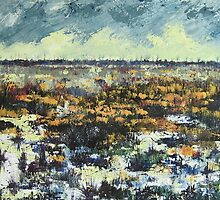 Marshland On the Fens by Sue Nichol