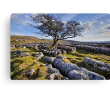 Above Langcliffe - The Yorkshire Dales Canvas Print