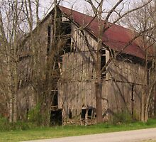 Rustic Beauty at Falls Mill by Charldia