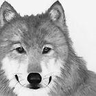 Wolf by Nikki Fraser