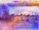 White Pelicans by arline wagner