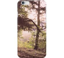 In the Daylight iPhone Case/Skin