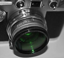 Dusty Green Lens by Karen Martin