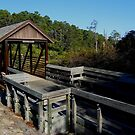 Little Rusty Bridge by Dawn di Donato